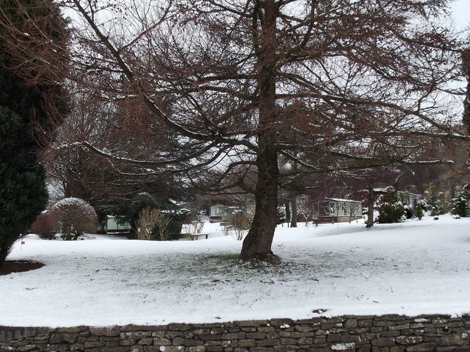 the park in the snow