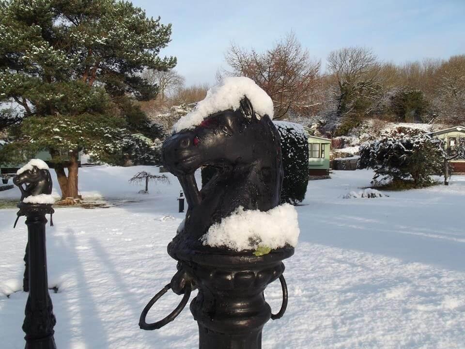 horses head bust bollard with snow