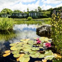 The Glade − Luxury Static Caravan Development