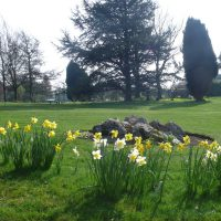 Hawthorns Park: March – April in Photos