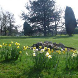 Hawthorns Park: March – April in Photos