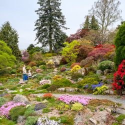 In the spotlight: Holehird Gardens, Lake District