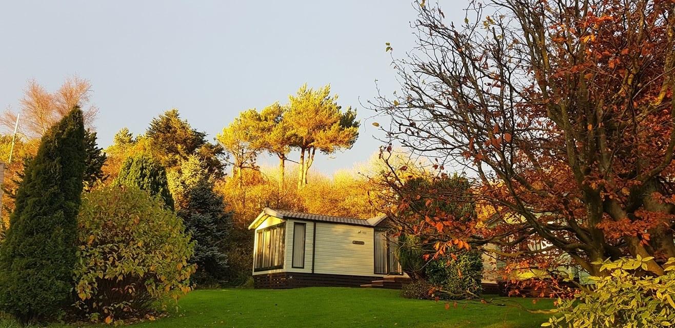 hawthorns park autumn 2020
